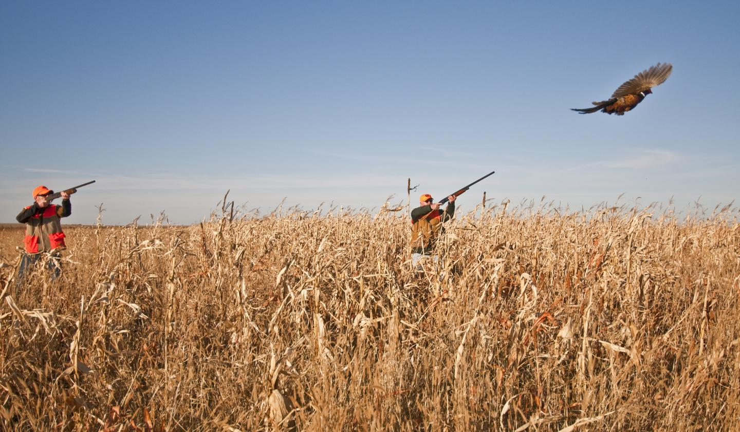Pheasant Hunting - South Dakota - Places to See: What to See