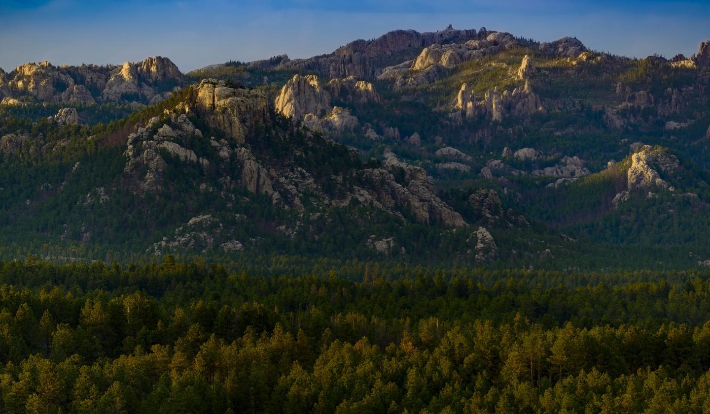 Black Hills National Forest South Dakota Scenic