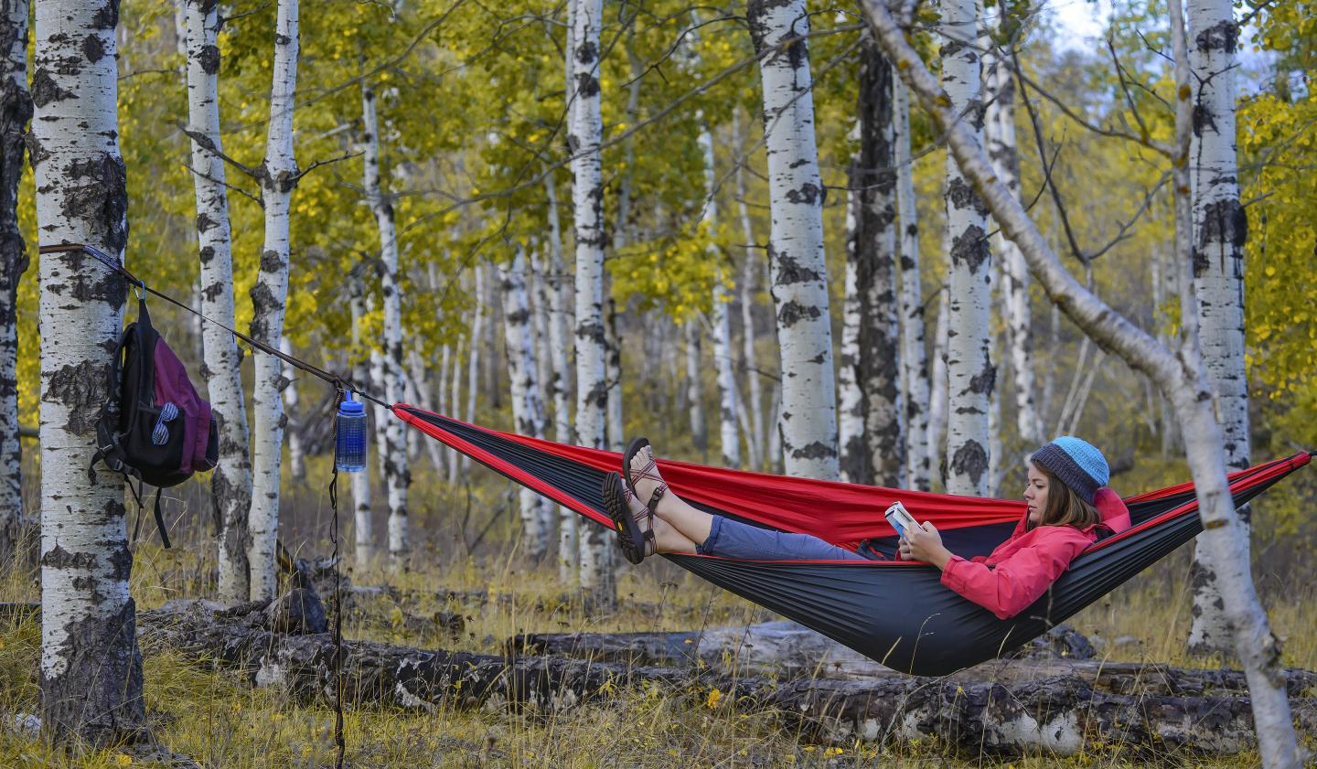 Hammocking - Black Hills
