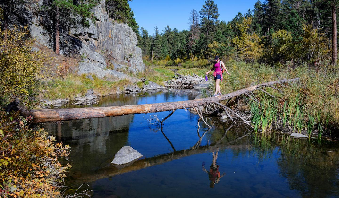 Hiking, Black Hills