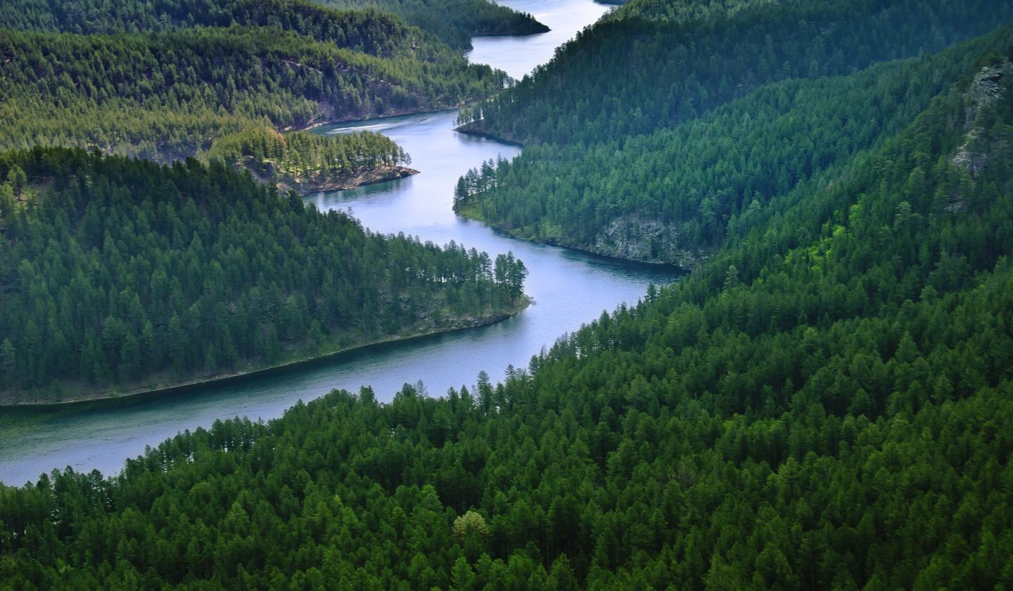 7 Unexpected Things Youll See in the Black Hills National Forest