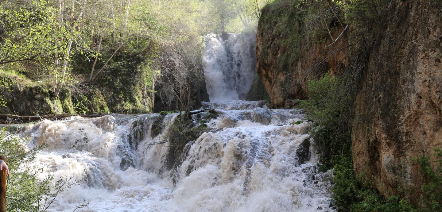 Hike to Roughlock Falls and Spearfish Waterfall