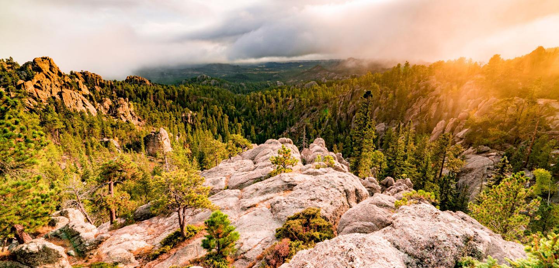 Black Hills National Forest South Dakota Scenic Overlook