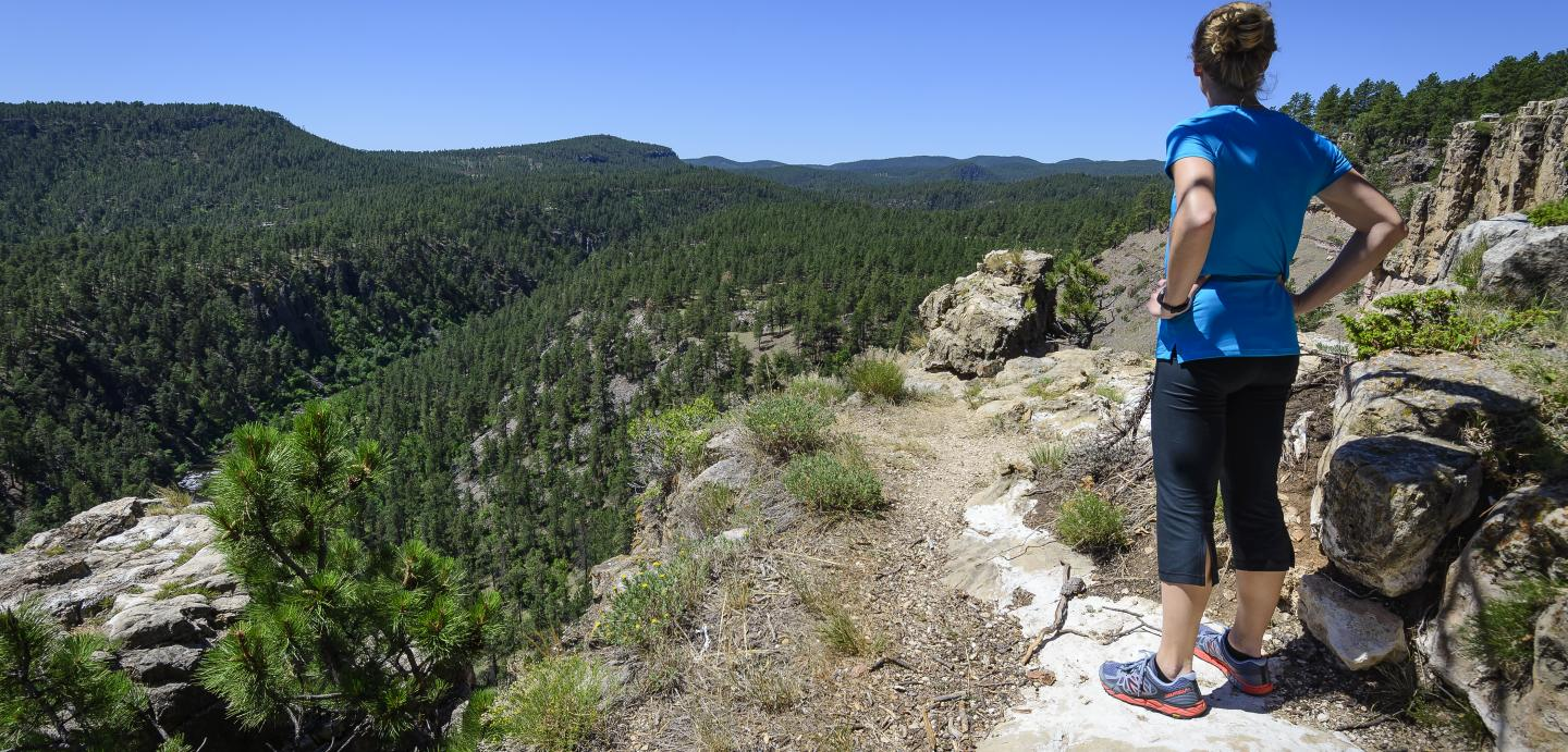 Buzzards Roost Trail
