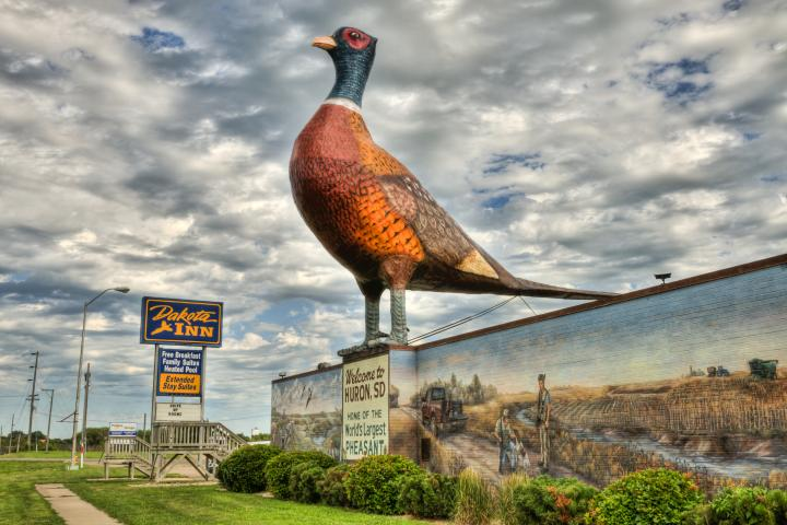World's Largest Pheasant sculpture in Huron, South Dakota