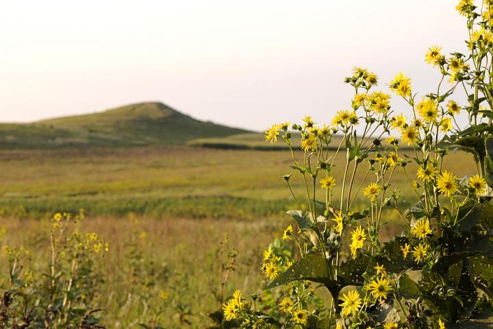 Spirit Mound, near Vermillion