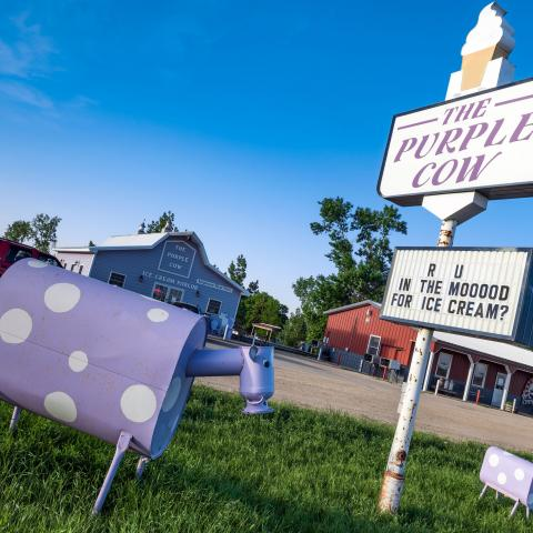 The Purple Cow Ice Cream Parlor Sign - Waubay