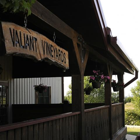 Valiant Vineyards, Vermillion
