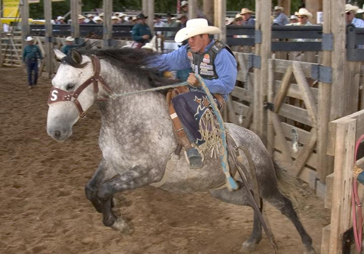 deadwood days of 76 rodeo bronc award winning july event